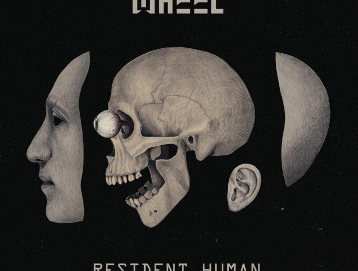 Wheel resident human vinyl web 3k